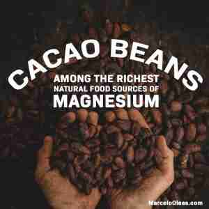 Cacao beans are an excellent source of magnesium